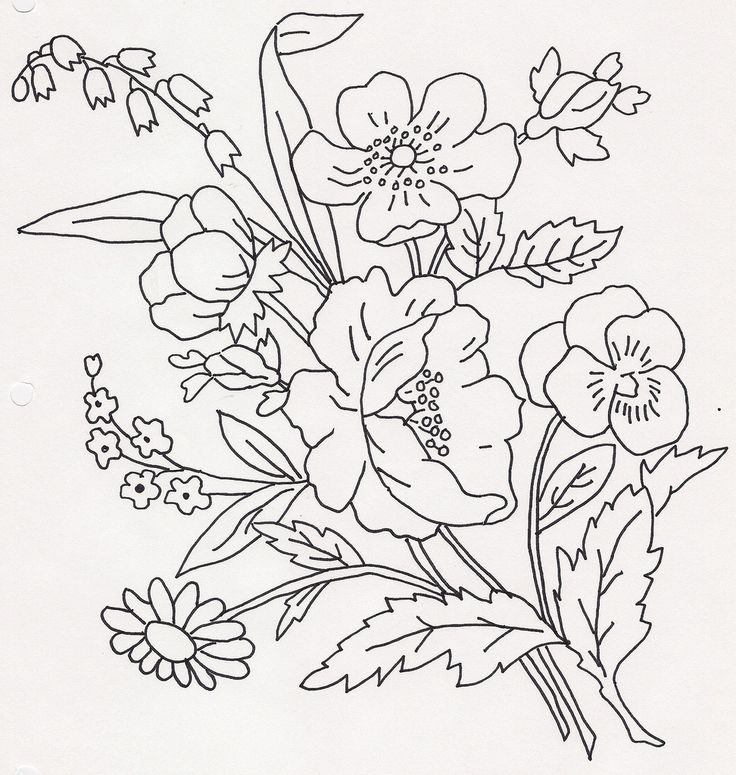 736x775 309 Best Hand Drawing Flowers, Trees And Leaves Images