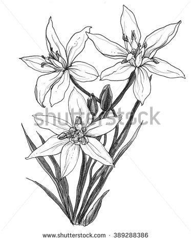 373x470 20 Of Bethlehem Wedding Bouquet