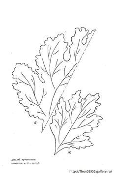 236x364 Sea Lavender. [Limomium.] (1739) Flowers Lavender