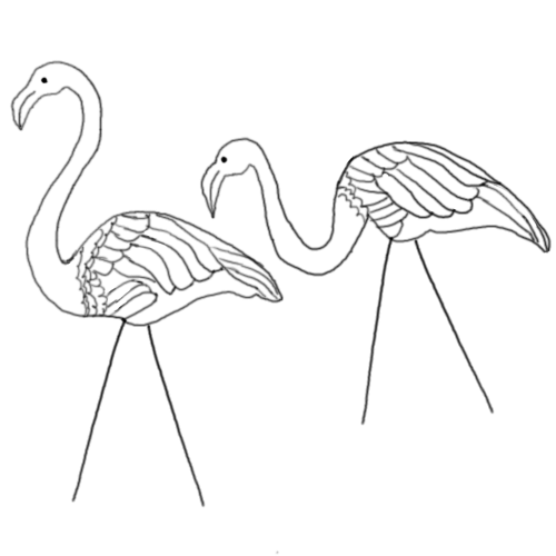 500x500 How To Draw Lawn Flamingos Save The Flamingos