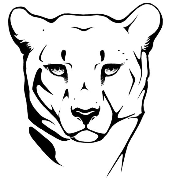 552x590 Cheetah Head Drawing Images Amp Pictures