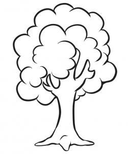 251x302 How To Draw A Simple Tree Step By Step With Pencil Easy