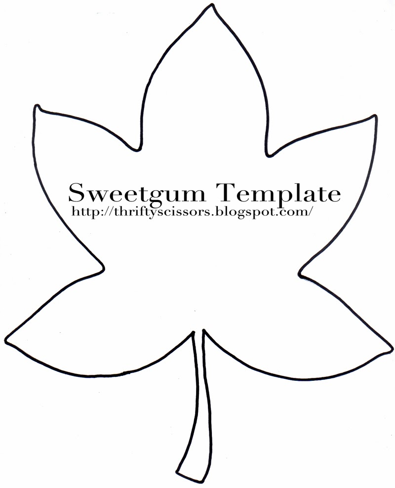 image about Fall Leaf Template Printable named Leaf Drawing Determine at  No cost for individual