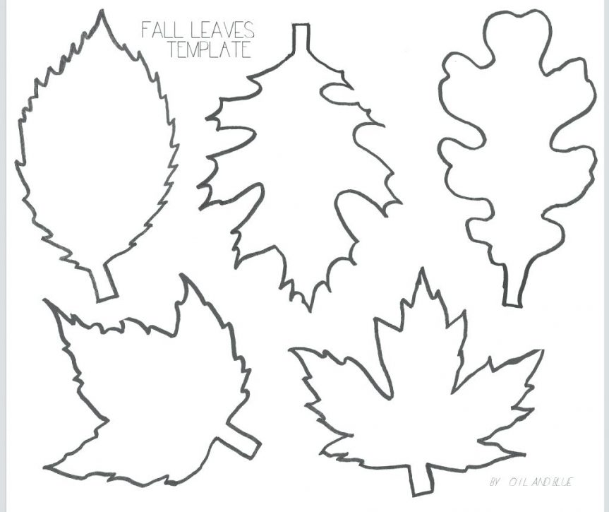 This is a photo of Printable Leaf Patterns with coloring page