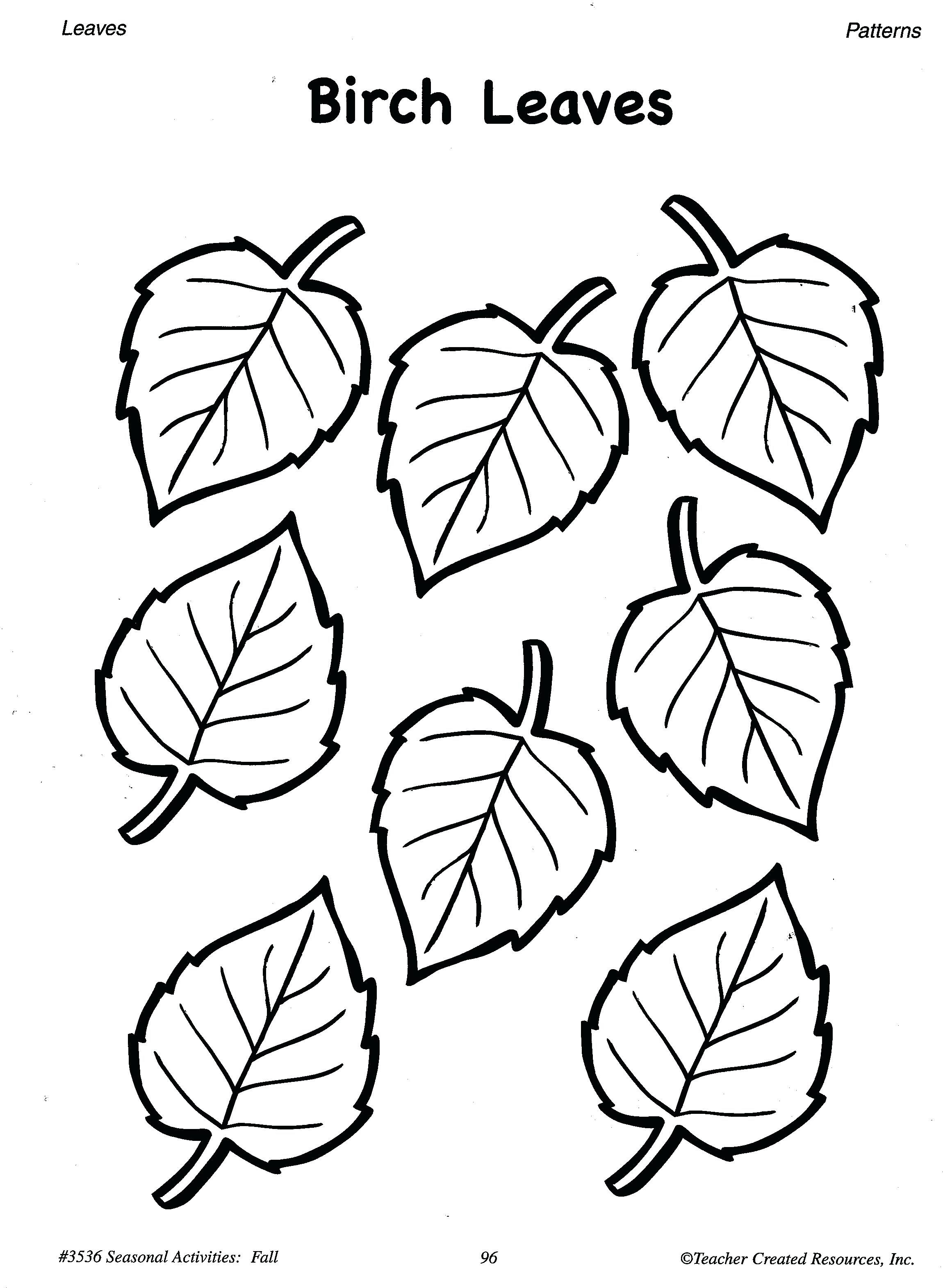 2300x3143 Printable Printable Tree Template No Leaves