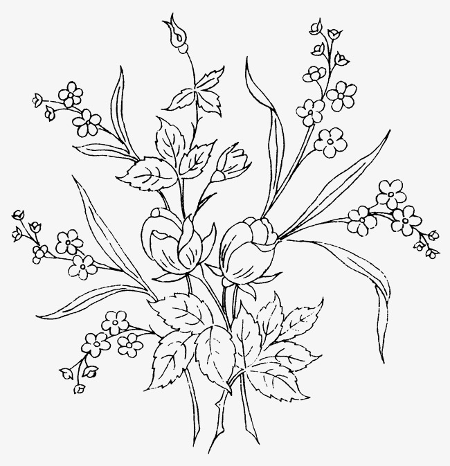 650x673 Flowers Leaves And Vines, Flowers, Leaves, Vine Png Image For Free