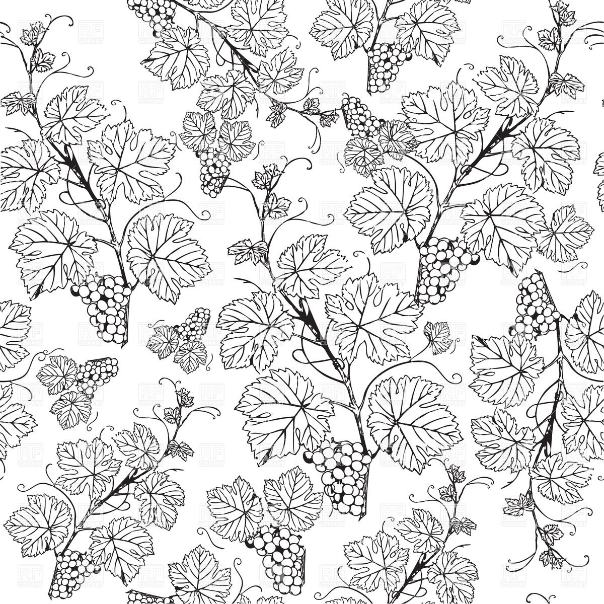 1200x1200 Grape Vine Sketch Pattern Royalty Free Vector Clip Art Image