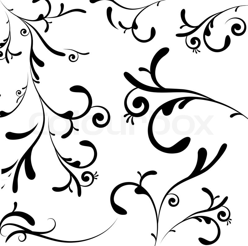 800x796 A Collection Of Black Leaf And Vine Like Swirls Stock Vector