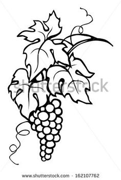 236x352 Illustration Of Black Calligraphy Frame Wine Label Vine Grapes