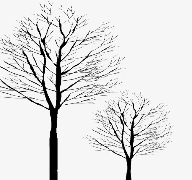 650x609 Leafless Tree, Tree, Art, Background Png Image And Clipart
