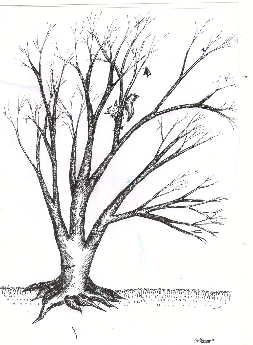 1024x1394 Leafless Tree Drawing Tattoos. Tattoo