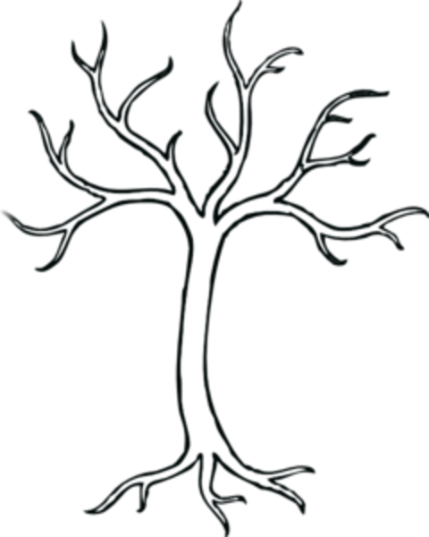 480x600 Leafless Tree Drawings Clip Art Art Tree