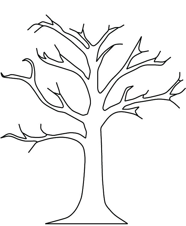 618x752 Beautiful Leafless Tree Coloring Page Online Download Pages