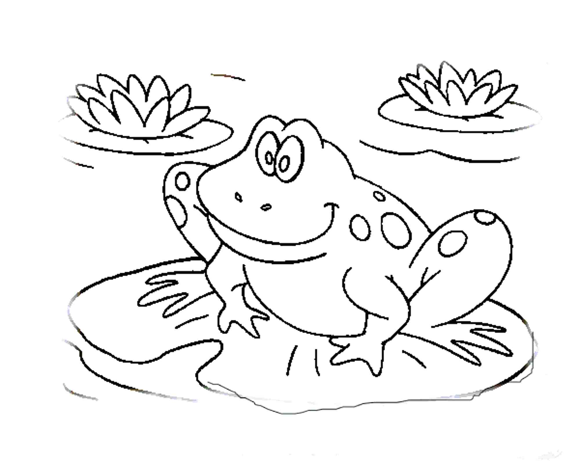 Leap Frog Drawing at GetDrawings.com | Free for personal use Leap ...