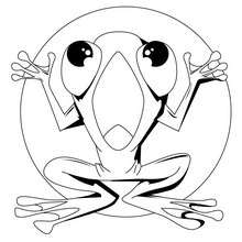 220x220 Leaping Frog Coloring Pages
