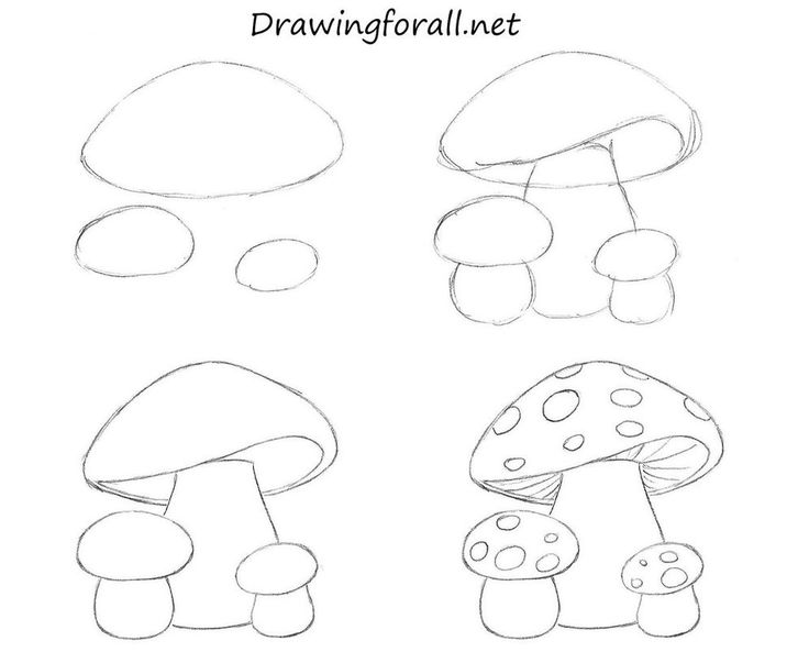 Learning Drawing For Toddlers