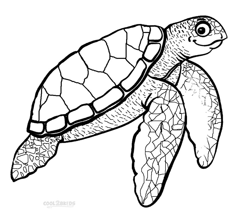 850x761 Printable Sea Turtle Coloring Pages For Kids Cool2bKids