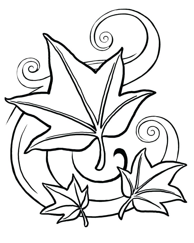 736x921 Elegant Leaves Coloring Pages Crayola Photo Ash Leaf Page Kids
