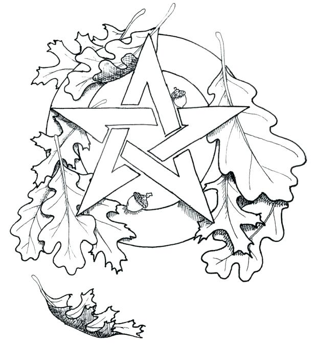 618x679 Oak Leaf Coloring Page Oak Leaves Drawing Library Free Images Oak