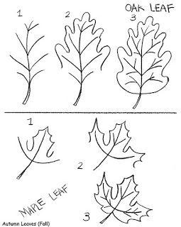 255x320 How To Draw Maple Leafndn Oak Leaf Inkspired Musings