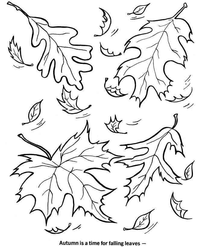 670x820 Best Fall Leaves Coloring Pages Ideas On Leaf