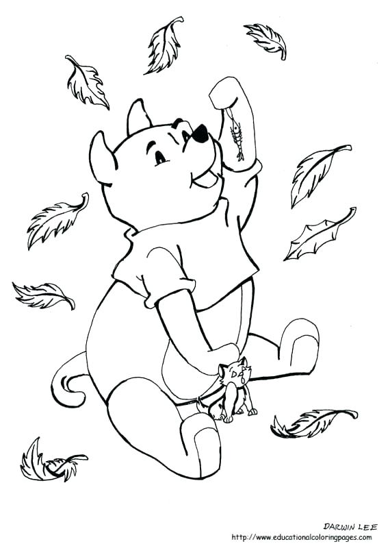 567x794 Pictures Of Fall Leaves To Color Autumn Leaves Coloring Page