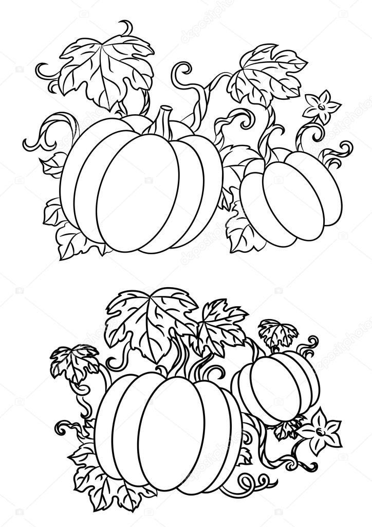 724x1024 Black And White Line Drawings Of Pumpkins Stock Vector