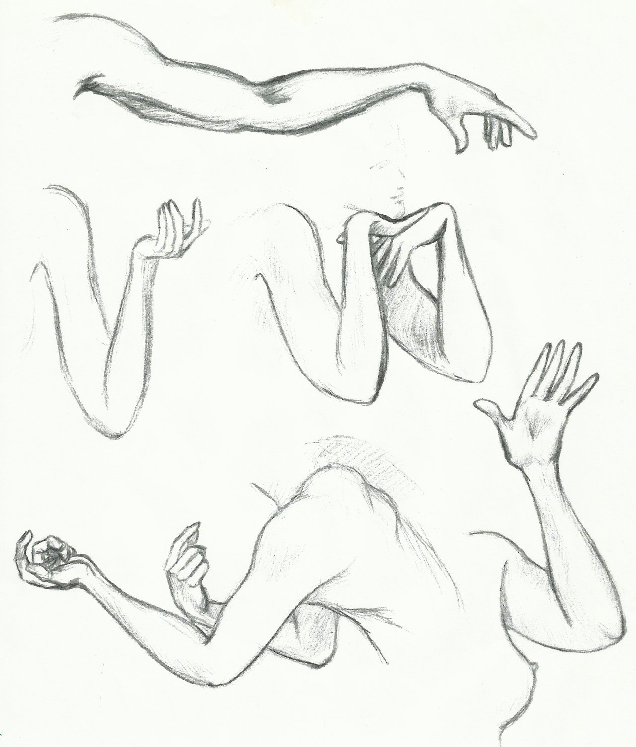 1280x1504 Female Muscular Arm Drawings Daily Sketch