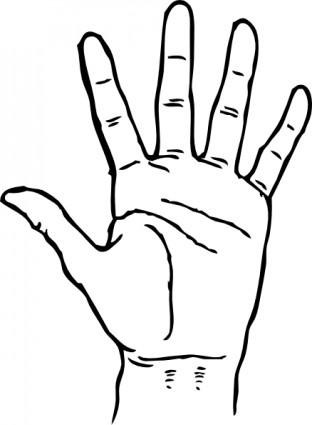 312x425 Hand Palm Facing Out Clip Art Vector Clip Art Free Vector Free