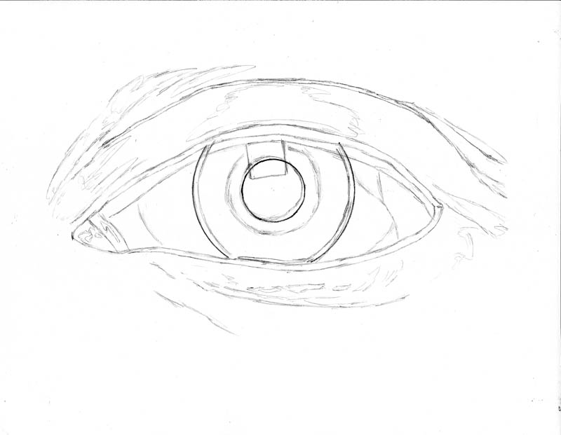 800x621 How To Draw An Eye Realistically (Part 2 Of 4) Let's Draw People