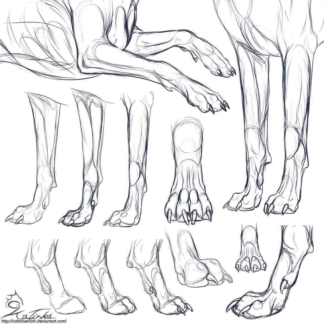 Leg Drawing at GetDrawings.com | Free for personal use Leg Drawing ...