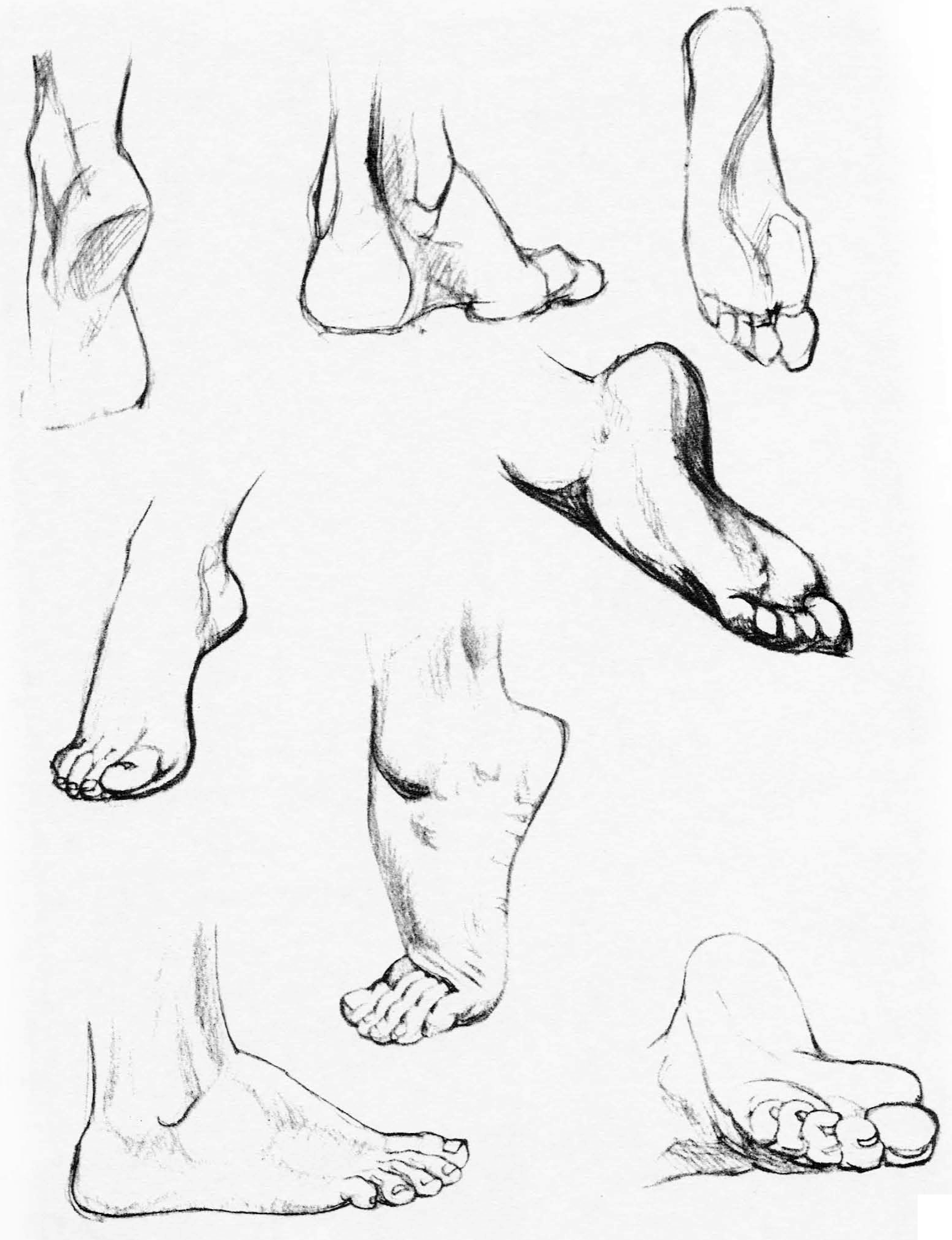 2322x3024 How To Draw The Foot Drawing Feet And The Anatomy Of Them