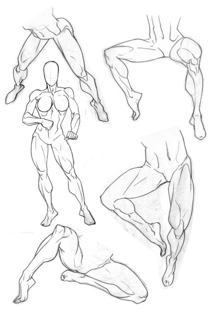 752x1063 Sketchbook Legs By Bambs79