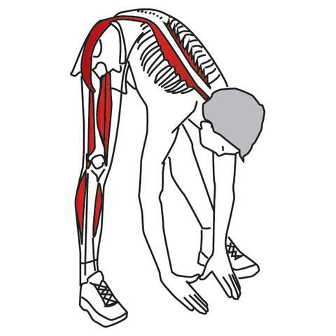 480x480 Stretching For Pain Relief And Rehabilitation