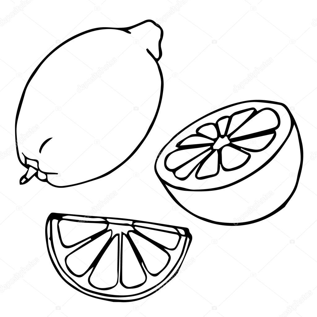 1024x1024 Lemon Set. Lemons, Four Views. Fresh, Natural Lemons Whole, Half