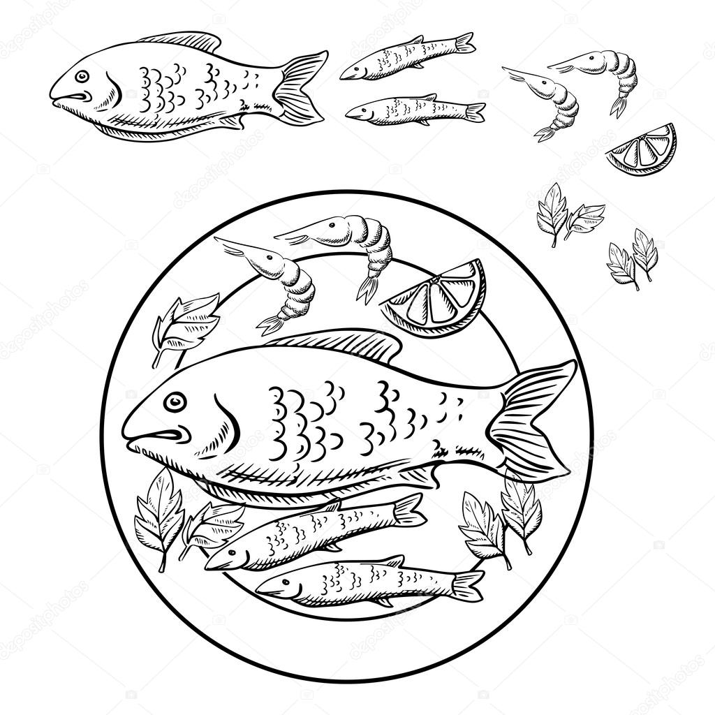 1024x1024 Sketch Of Seafood With Fish And Shrimps Stock Vector