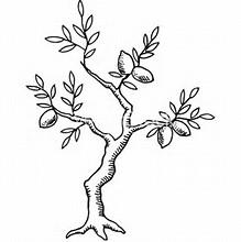 219x220 Resultado De Imagem Para Lemon Tree Drawing Tattoos