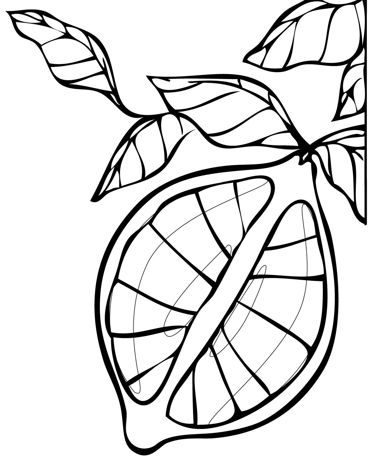 1275x1650 Lemon Coloring Page
