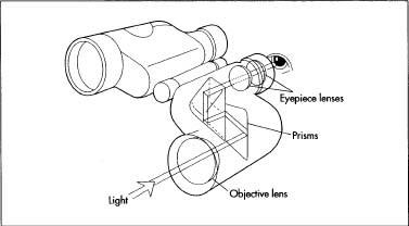 377x208 How Binocular Is Made