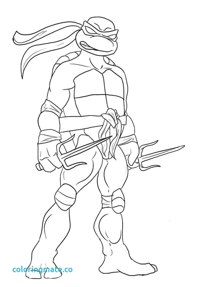650x927 Ninja Turtles Coloring Page Inspirational Leonardo Ninja Turtle