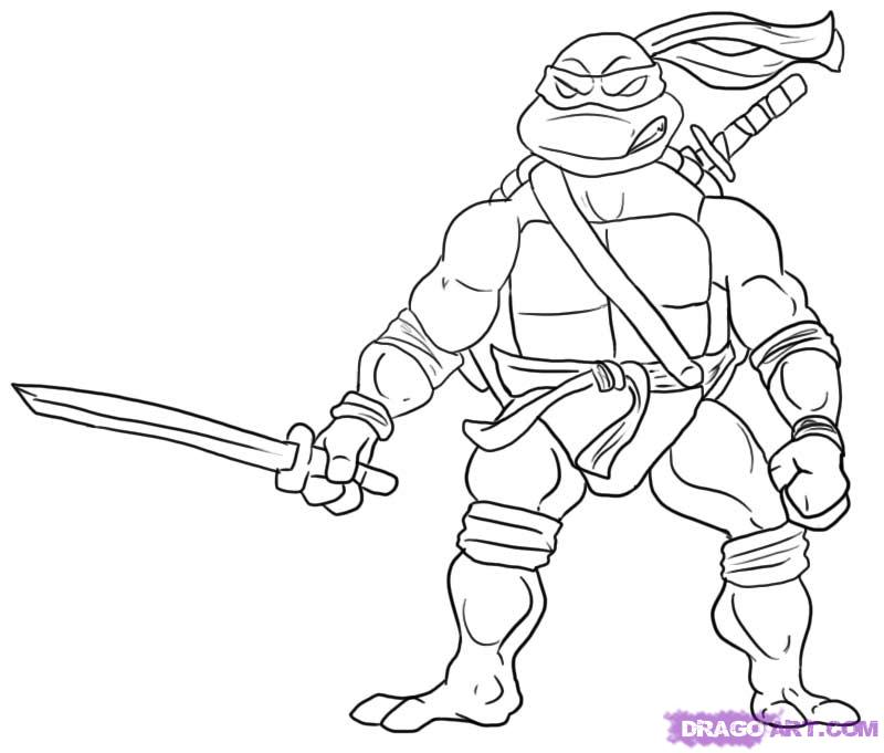 800x681 How To Draw Leonardo From Teenage Mutant Ninja Turtles Step By