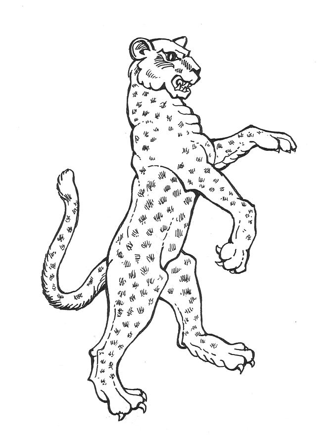 673x900 Leopard Drawing By David Burkart