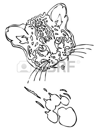 330x450 Leopard Puma Or Jaguar Face Realistic Graphics With Print
