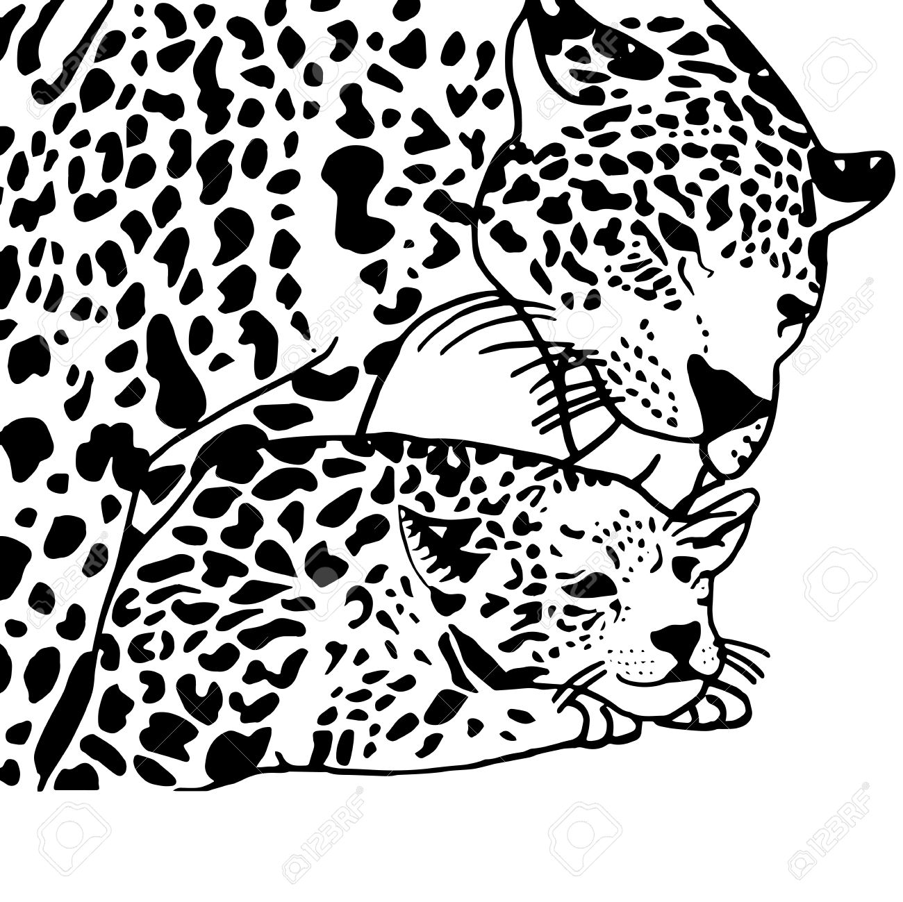 1300x1299 High Quality Drawing For Coloring Mother And Child Leopard Royalty