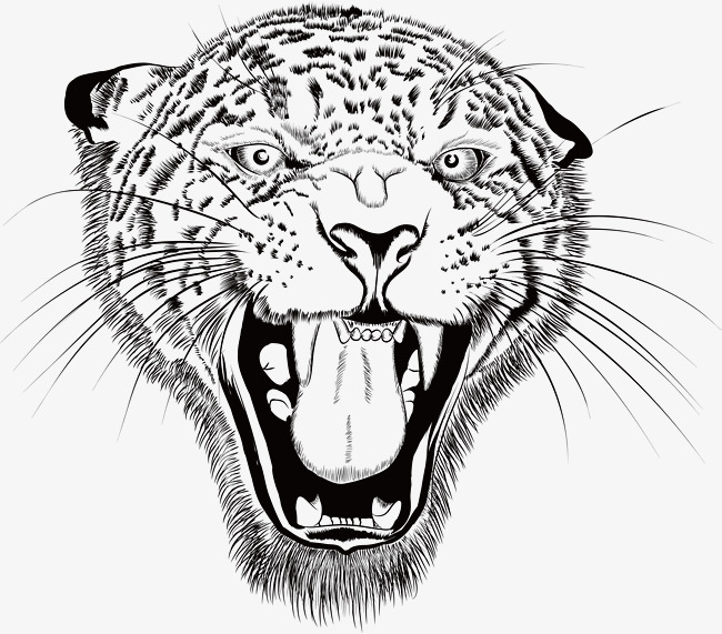 650x571 Exquisite Hand Painted Sketch Leopard, Vector Png, Leopard, Hand