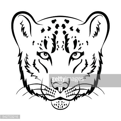 416x416 Snow Leopard Logo Snow Leopard Head Isolated Vector Illustration