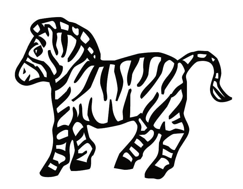 810x630 Zebra Print Coloring Pages Printable Zebra Print Stencil Library