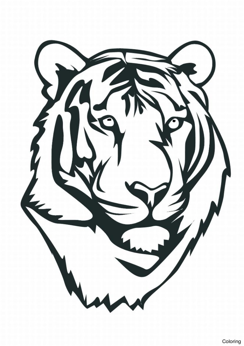 829x1176 Maxresdefault How To Draw A Tiger For Kids Coloring Easy Step By