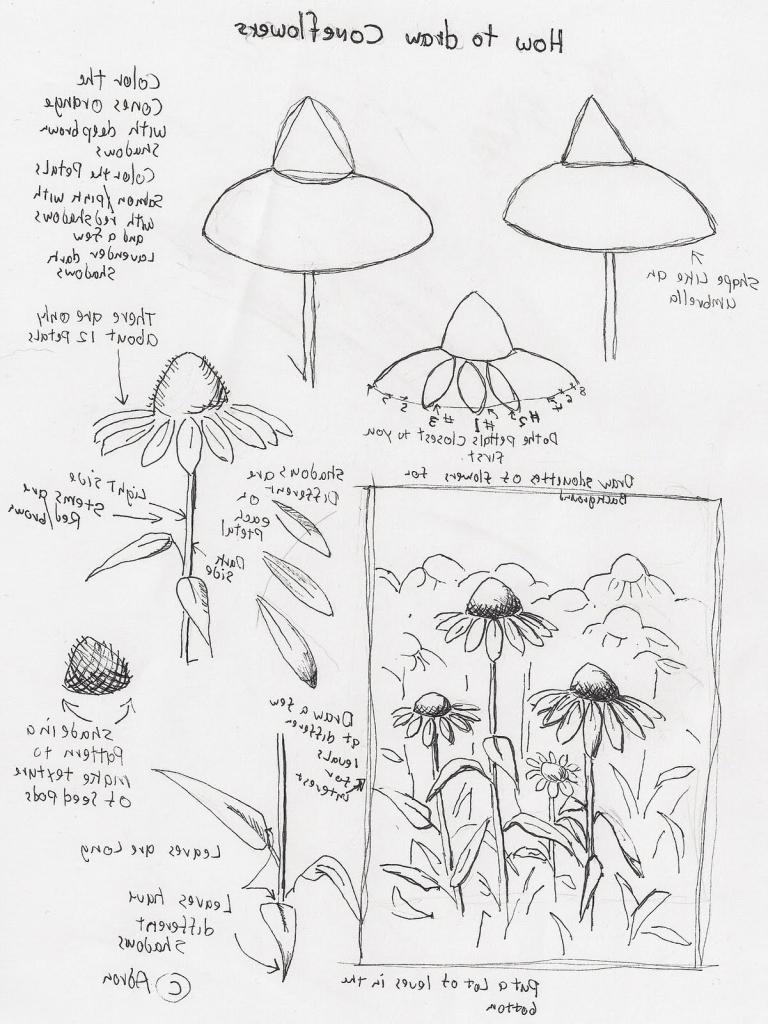 768x1024 Still Life Drawing Lesson How To Draw Still Life Tutorial