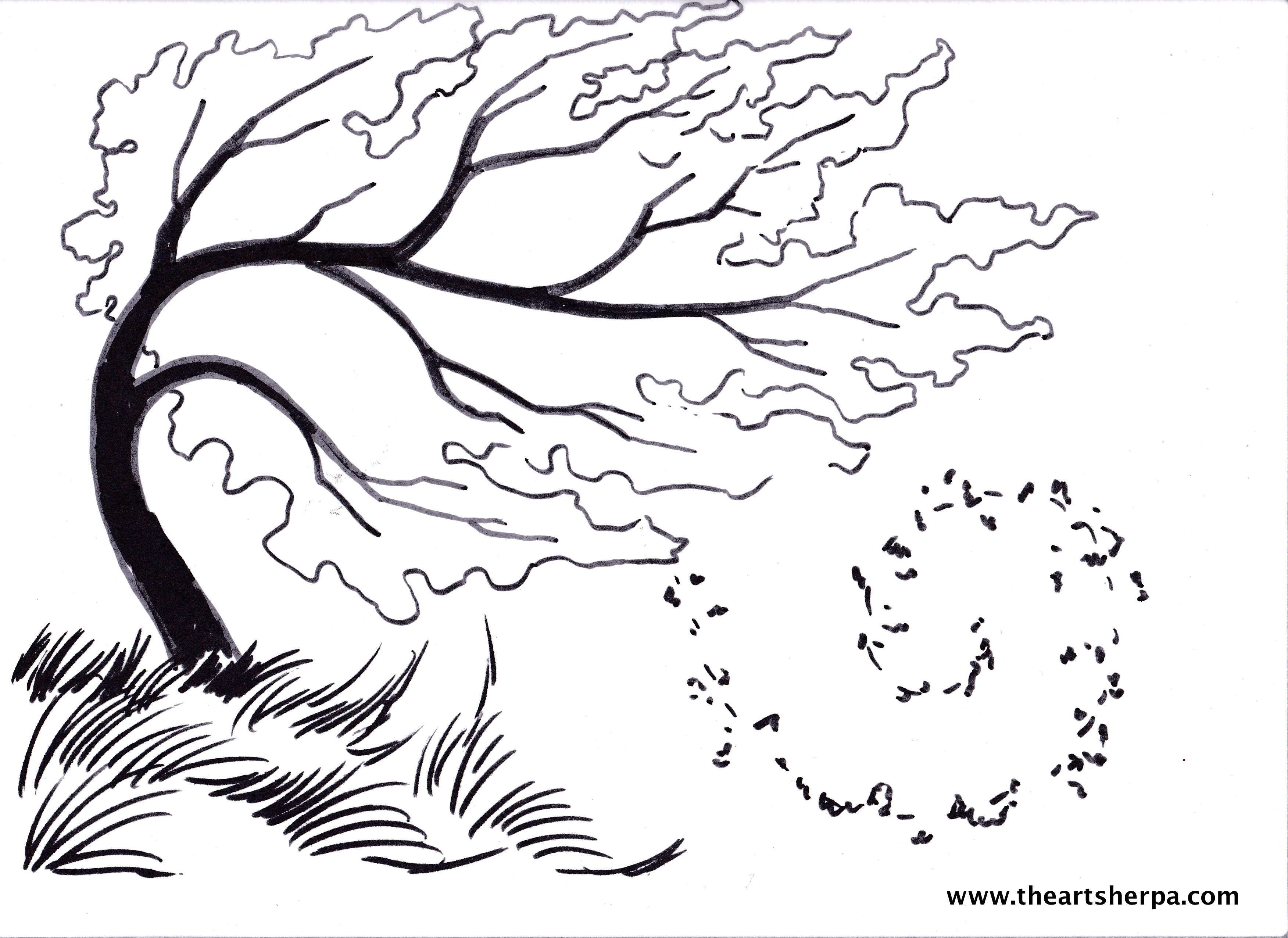 3504x2552 Birch Tree Blowing In The Wind For The Youtube Art Sherpa Full